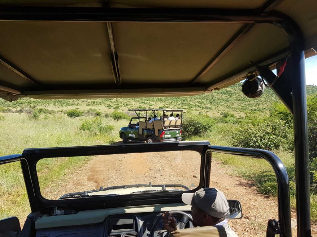 Pilanesberg Open Vehicle (2)