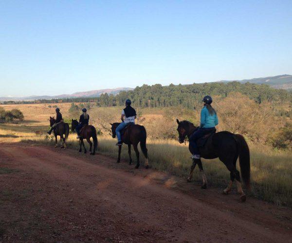 Mlilwane Horseback Safaris